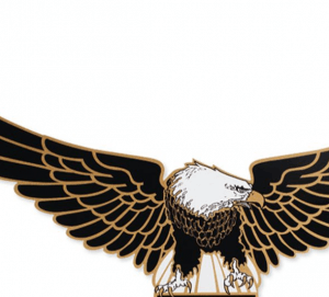 Harley Davidson Eagle Fairing Decal